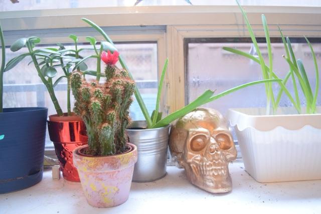 Valentine's Day Gift Ideas - TheCraftyMann.Blogspot.Ca