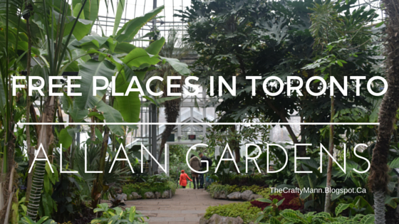 Allan Gardens - Free Things to Do in Toronto - TheCraftyMann.Blogspot.Ca
