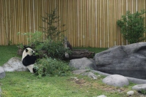 Toronto Zoo - JanessaMann.Com