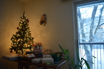 Christmas 2016 - JanessaMann.Com